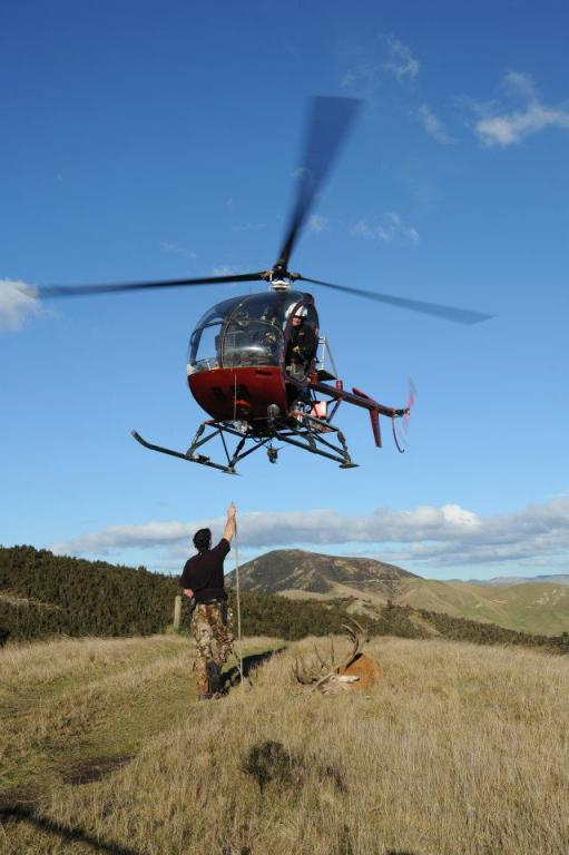 Hog Hunting Helicopter Tour
