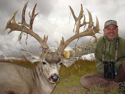 Kansas some big mule deer