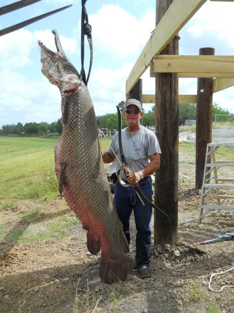 New record alligator gar easttexas hunting for Fishing rules in texas