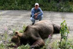 Big, big bear.