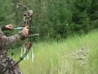 Video. Grouse Bow Hunt. Montana.