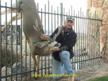 Fenced Deer