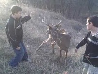 Saving a Buck from a Fence