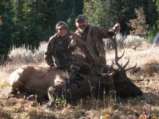 a wyoming bull elk hunt