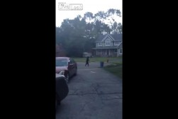 Bear walks upright in New Jersey visit link to watch video