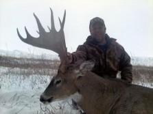 Unreal Montana Buck