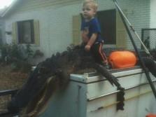 Gator Hunt