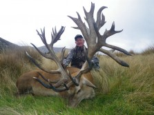 New:World Record Red Stag Taken at Alpine Hunting Ranch