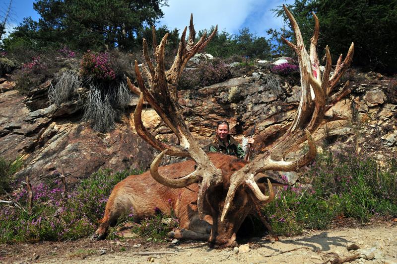 Red Stag Deer!! | Hunting
