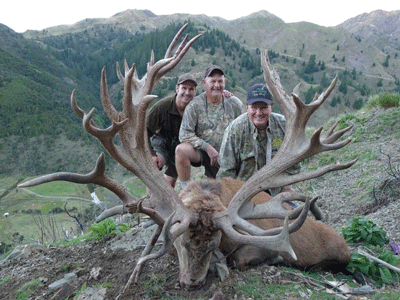 World Record Red Stag,...