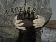 First Saskatchewan black bear hunt.