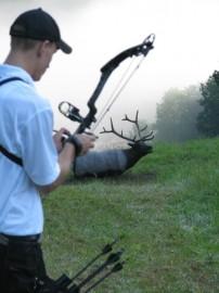 Elk target