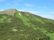 Alpine horseback hunting