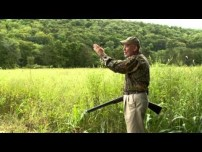 Awesome Dove Shooting Tips Video.