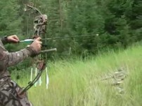 Video. Grouse Bow Hunt. Montana.