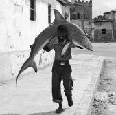 Boy Carrying a Shark