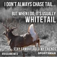 Chasin Whitetail