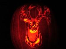 Killer Pumpkin Carving!!