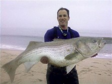 Delaware State Record Striped Bass