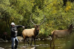 Elk Fishing