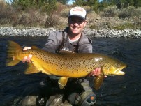 Huge Brown Trout Video