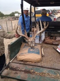 Huge Dead Buck Found in Texas
