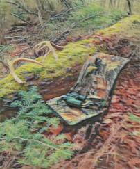 hunter's stump
