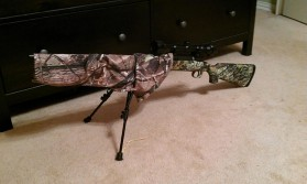 My hunt in the woods gun