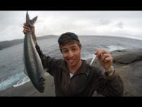 New Fishing Bait