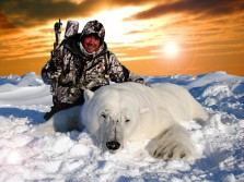 Rare Polar Bear Bow Hunt