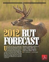 Rut Forcast