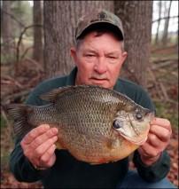 South Carolina: World Record Sunfish