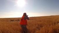 South Dakota Pheasant Hunt
