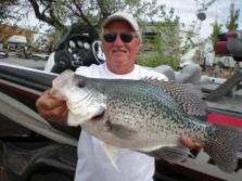 Holy Crappie!