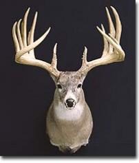 World Record Sheds.Nebraska.