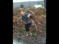 Young buck attempts to mate with blonde teen