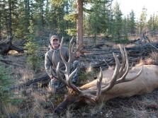 Monster Elk!!