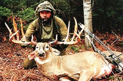12 Point Michigan Whitetail