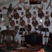 12 Trophy Rooms you need