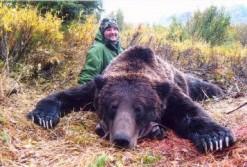 1100 Pound Grizzly