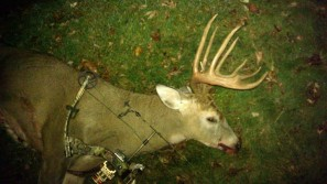 WI Bow Kill Side View
