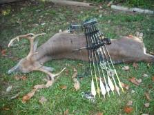 Sept 2010 Archery NJ