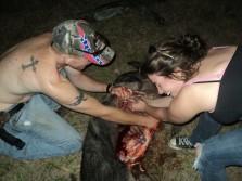 First Hog Hunt