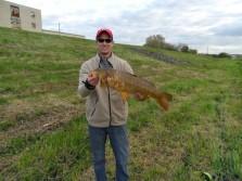 Another big carp