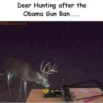 After The UN Gun Ban