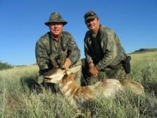 Antelope in 2008