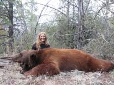 Big Cinnamon Phased Black Bear