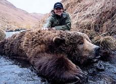 Boone and Crockett Brown Bear