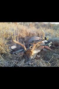 Bow Buck Taken today!