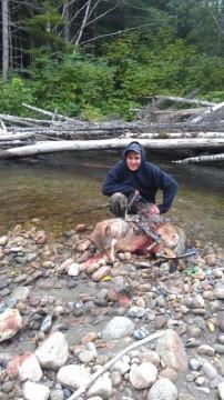 bow kill wolf